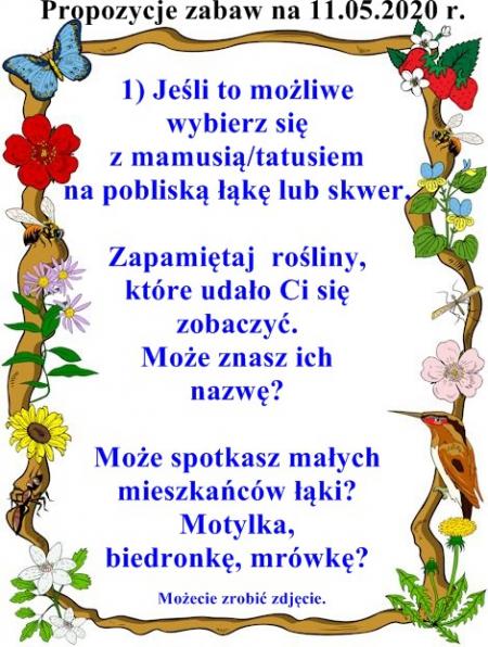 Majowa łąka - 11.05-15.05.2020 r.
